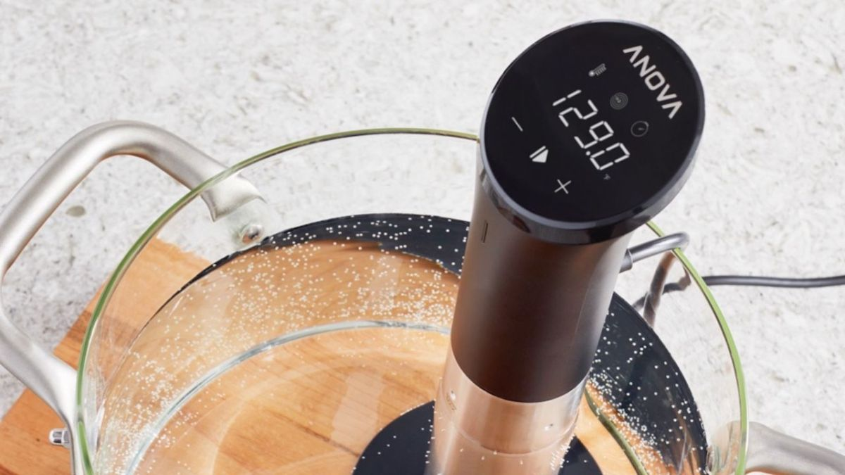 Miss going to fancy restaurants? This sous vide is the next best thing (and it's on sale).
