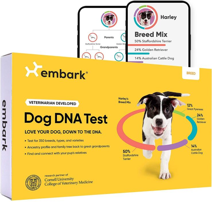 Learn more about your pandemic pup with Embark's dog DNA test sale