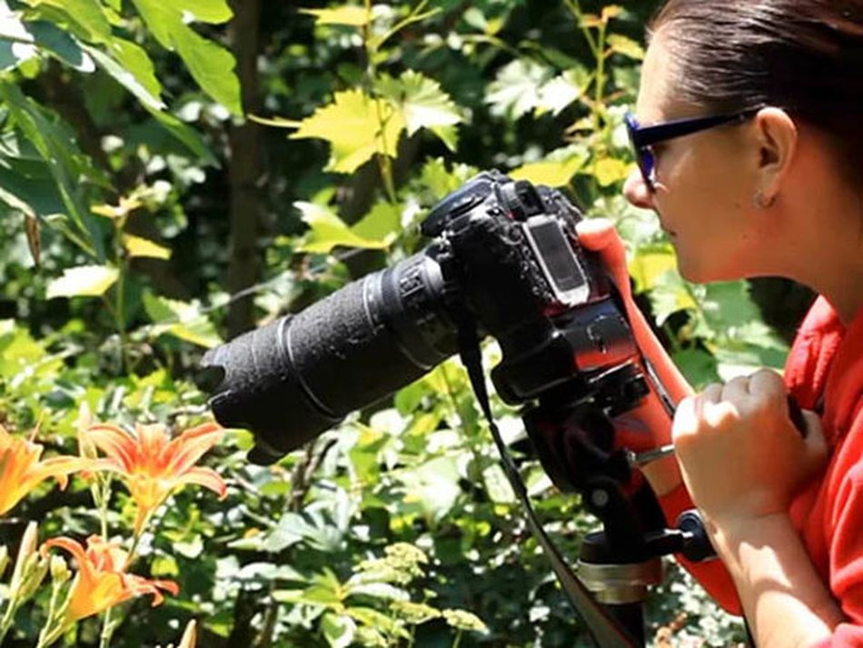 Take (and edit) great photos with this set of discounted online courses