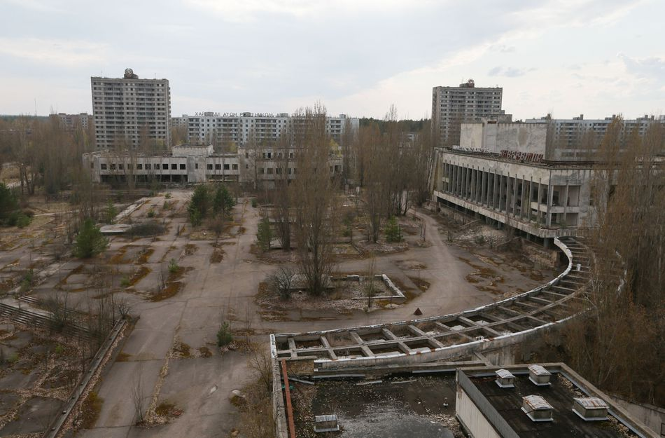 A Wolf Left Its Irradiated Chernobyl Home What Happens If