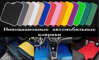 Бизнес-идеи: По производству автомобильных инновационных ковриков