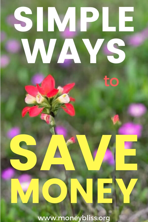 Learn simple real life ways to save money. Track your budget to find extra money. Great idea and tips for beginners. #save #moneybliss