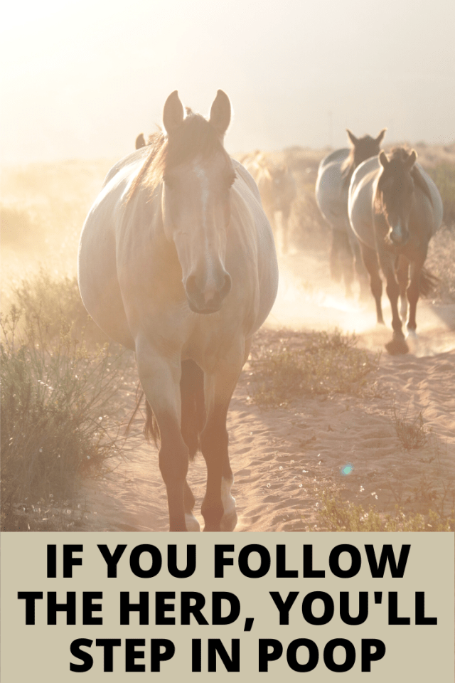 """Just because something is considered """"normal"""" doesn't make it right. Smart money choices are hard, but if you follow the herd you'll step in poop #FI #quotes #liveintentionally"""