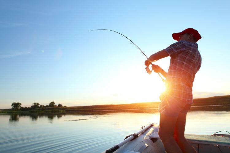 Amazing trout fishing