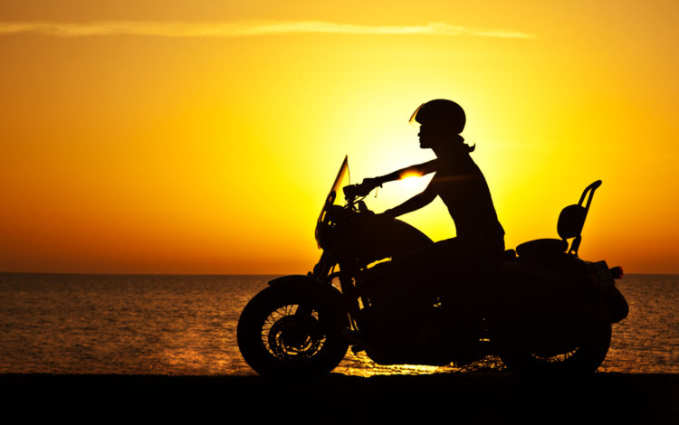 Harley Davidson Sissy Bar