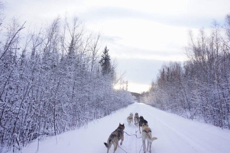 Fairbanks Alaska