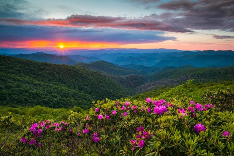 Ballantyne East, North Carolina