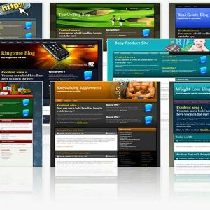 I Will Give You 3500+ Turnkey Websites And PHP Scripts With Resell Rights