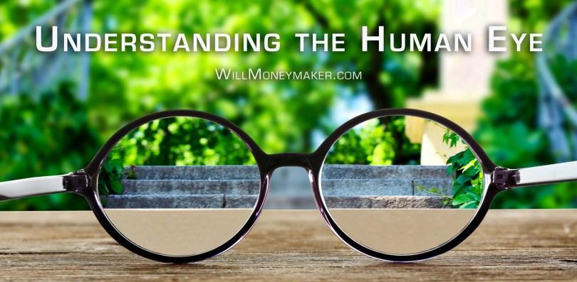 Understanding the Human Eye