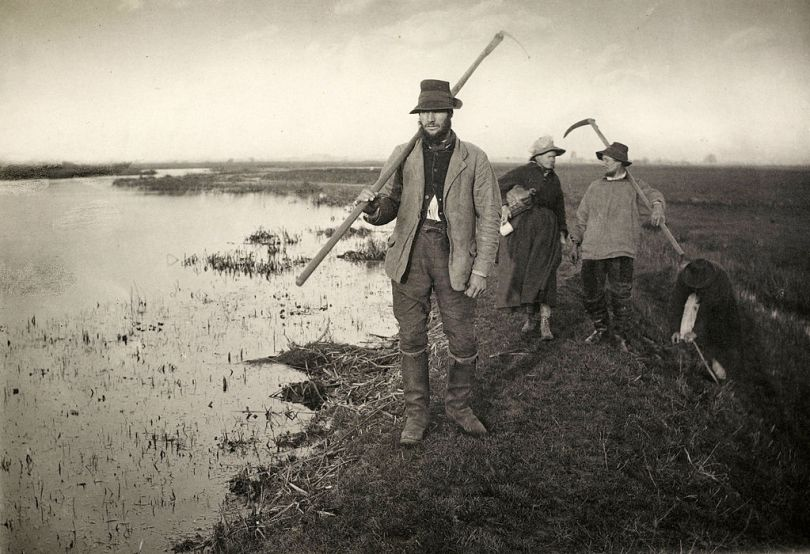 Coming Home from the Marshes, platinum print by Peter Henry Emerson, 1886