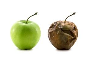 debt collectors different bad apple rotten