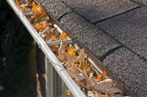home maintenance gutters save money