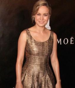 Brie Larson Net Worth Sources