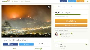 A GoFundMe page that accepts donations for the Tennessee fires. There's no good way of telling a legit page from a scam.