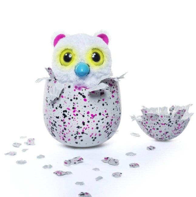 money-back-for-hatchimal