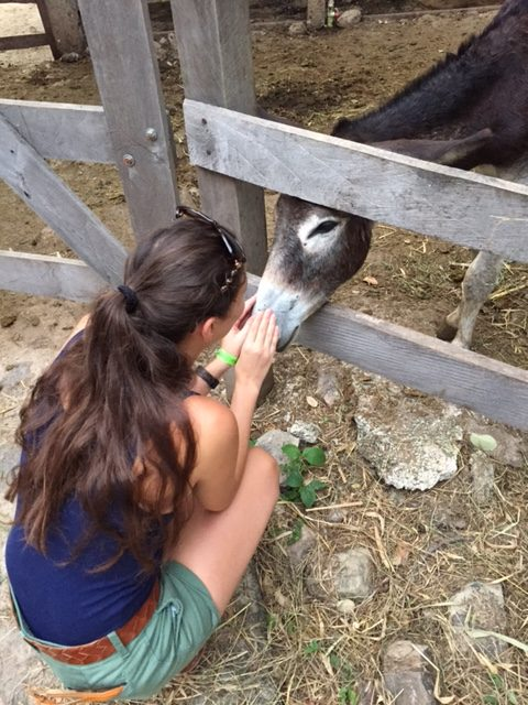 Sometimes you just have to pet the donkeys (Brooke had to do it ALL the time).