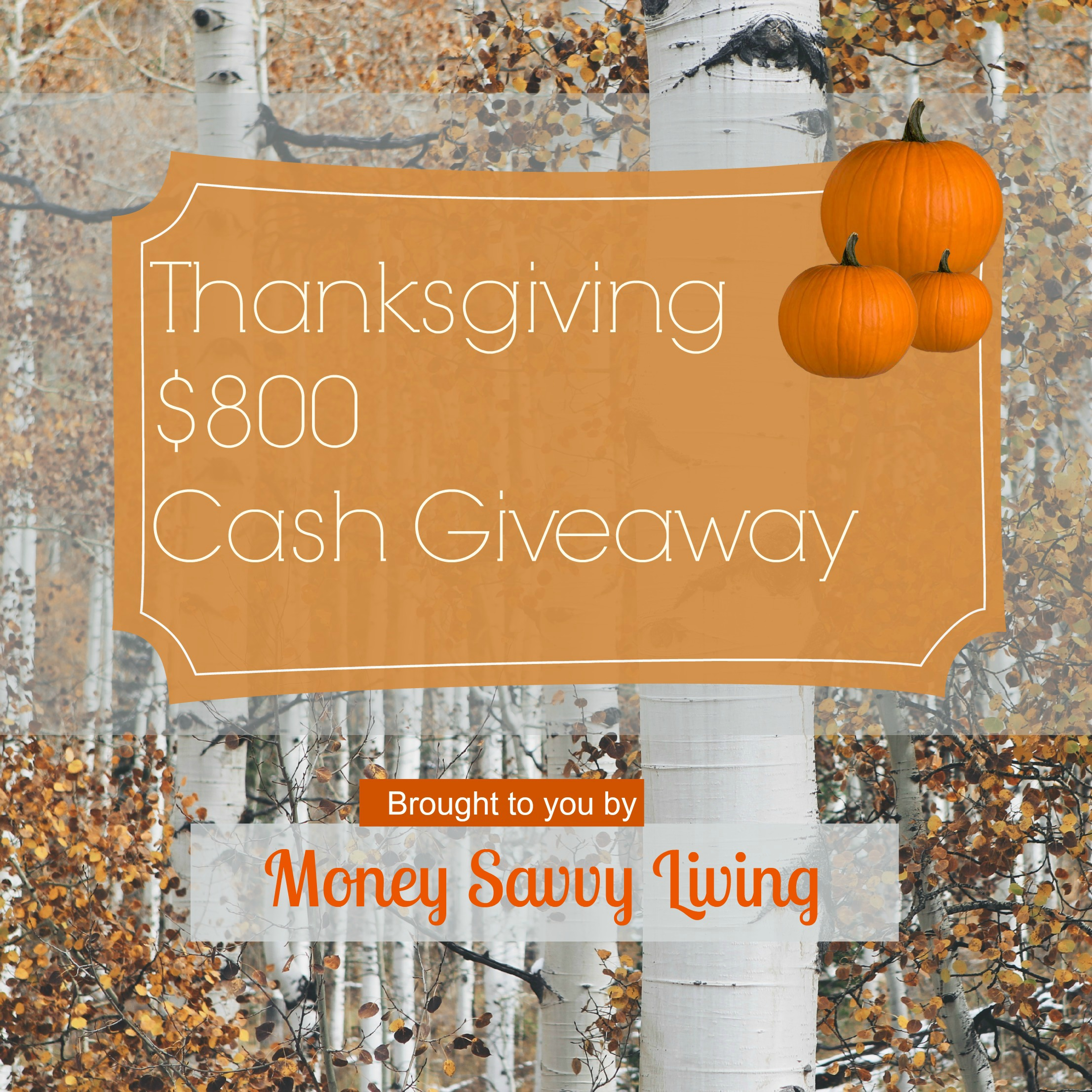 Thanksgiving Giveaway | Money Savvy Living