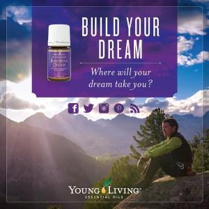 young living essential oils   Money Savvy Living