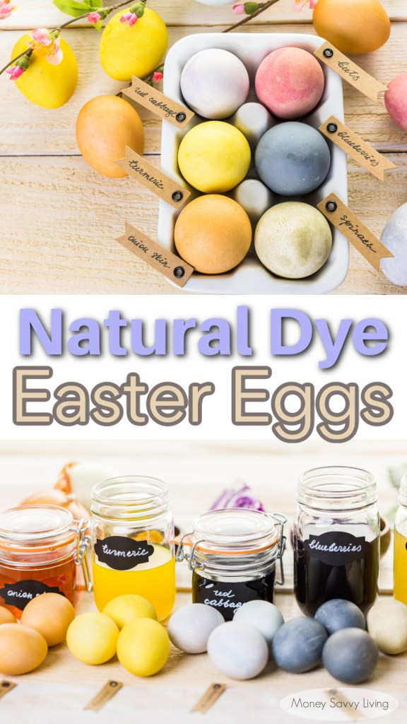 Natural Easter Egg Dye PIN