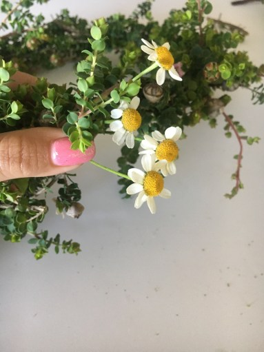 Easy DIY Flower Crown