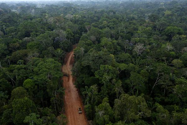 Carretera aceite ilegal a través de la selva amazónica