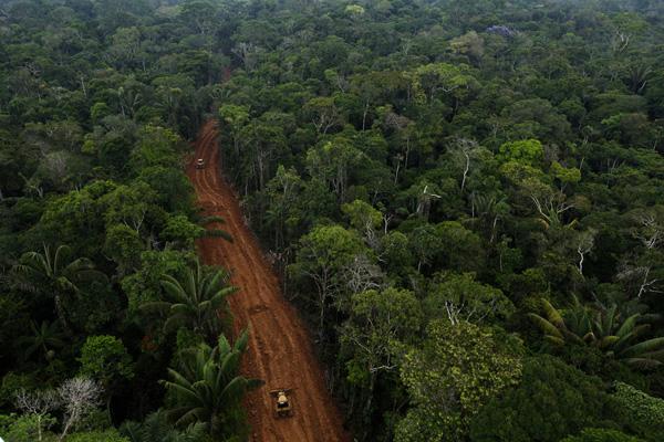 Secret carretera Petroamazonas en la selva amazónica