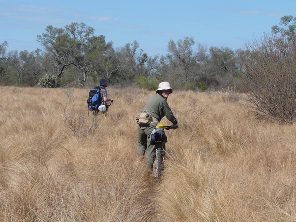 Verónica Quiroga and Veterinarian Juan Arrabal checking trails in Copo National Park.