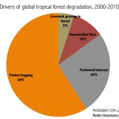 Diagram Of A Tropical Forest 4 Wire Relay 10 Rainforest Facts For 2017 Chart Loss Across Biomes