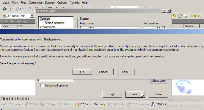 FTP How To Connect via WinSCP4