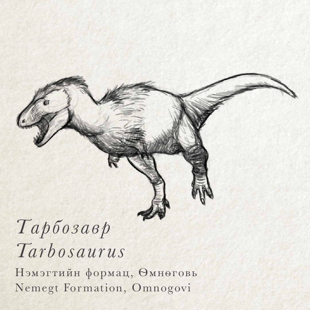 Uncategorized Sketches Of Dinosaurs mongolian dinosaurs institute for the study of tarbosaurus was a meat eating dinosaur that ate other although it probably killed its prey some scientists thi