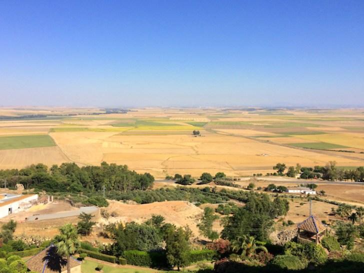 パラドール・デ・カルモナのテラスから見た景色