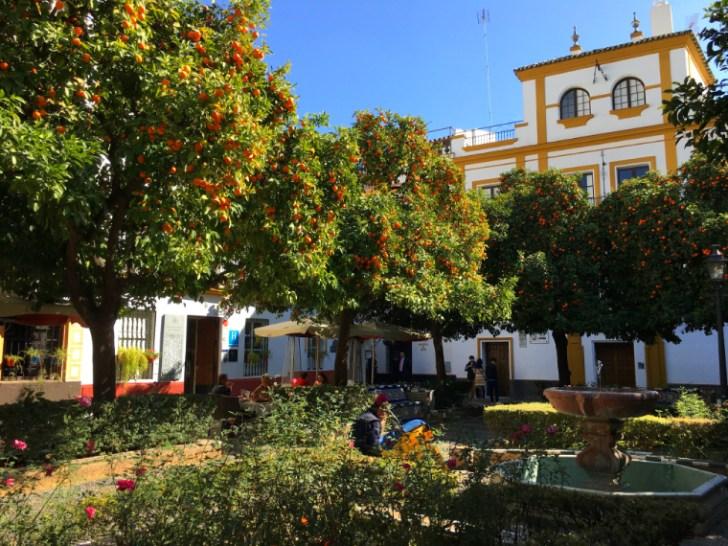 セビリアのサンタクルス街にあるドーニャエルビラ広場のオレンジ