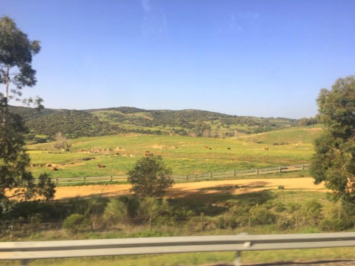 セビリアからハブーゴに向かうバスの風景