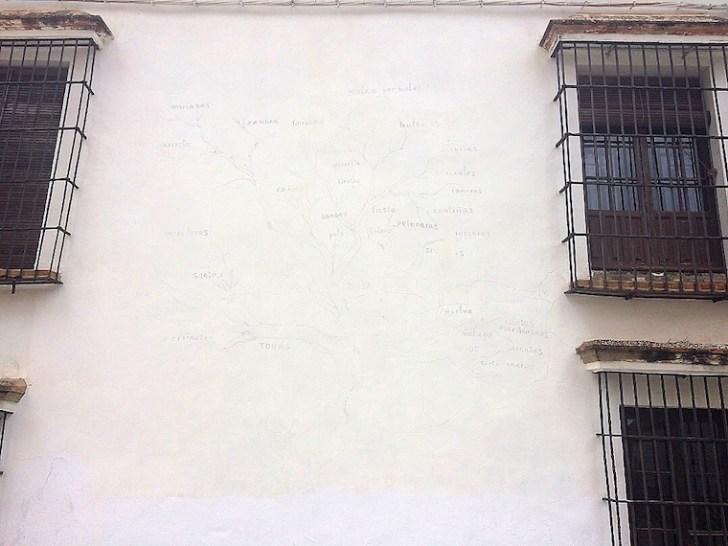 アルコス・デ・ラ・フロンテーラのフラメンコの木