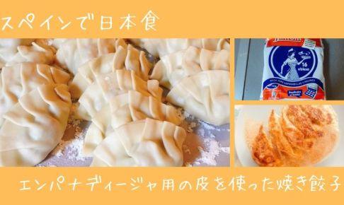 スペインの食材で日本食を作ってみた:焼き餃子