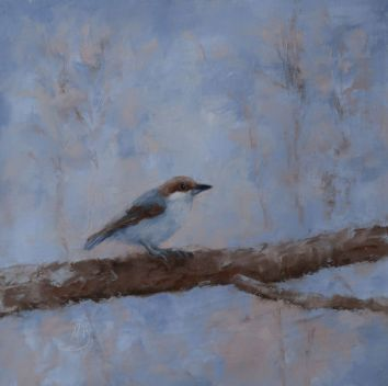 """The brown-headed nuthatch is a small songbird found in pine forests throughout the Southeastern United States. Their numbers are declining. It is a companion piece to my other Brown-Headed Nuthatch painting. 16""""x16"""" original oil on canvas. You can also buy this image printed on home décor items such as canvas prints and even pillows and coasters. See the Shop tab for more details."""