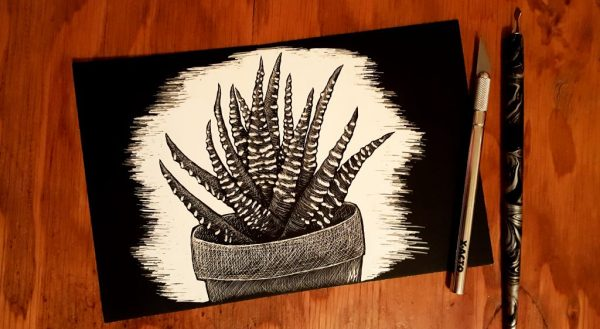 Starting an Art Business Zebra Plant Scratchboard with an Xacto knife and scratch on the right. Background is reddish-brown wood.