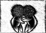 SeedHeads2