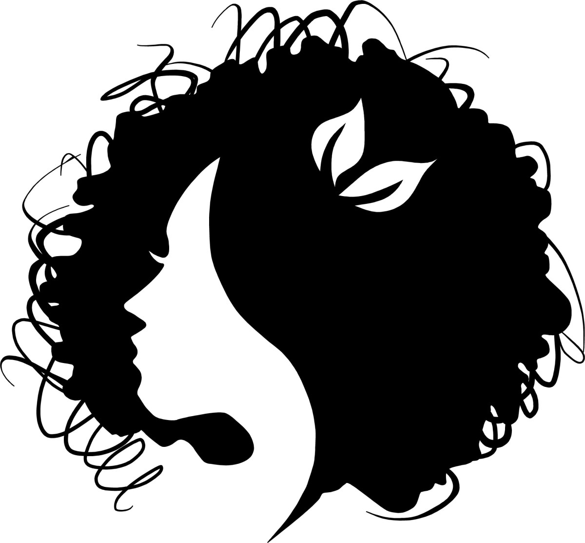 monicaraehair curly hair engineer