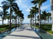 Key West Rain & Monica' Tangled Web