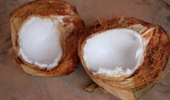 Zucchini Coconut Yogurt Bread