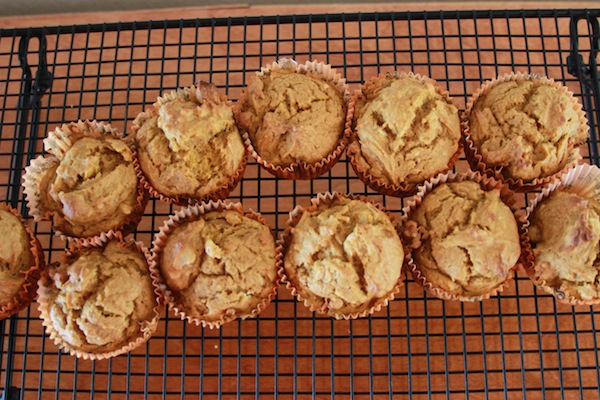 orange macadamia nut pumpkin muffins