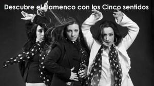 Descubre el Flamenco con Los Cinco Sentidos
