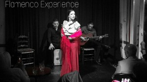 Flamenco Experience Kids