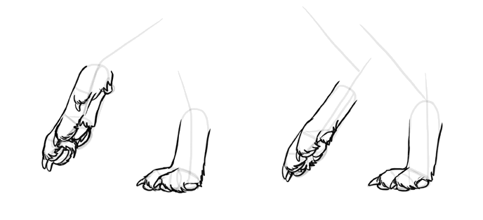 how-to-draw-wolves-feet-6