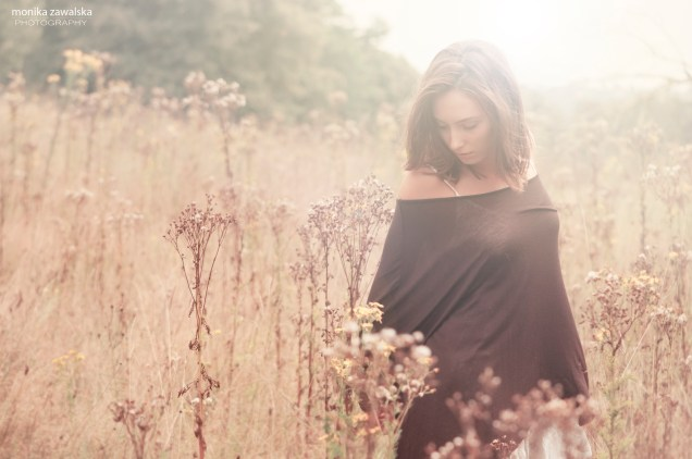 alex meadow