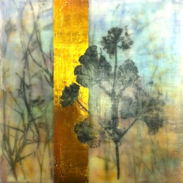 Encaustic mixed media with fynbos monotypes Monique Day-Wilde (2)