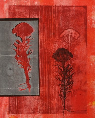 Botanical monotype with Fynbos