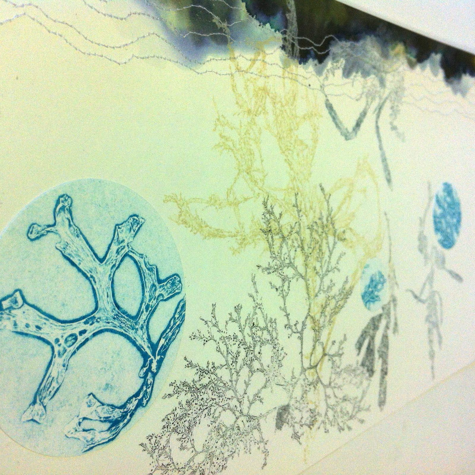 detail - monotype with seaweed, stitching, ink, on paper