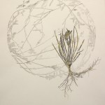 Monotype with fynbos and metal leaf